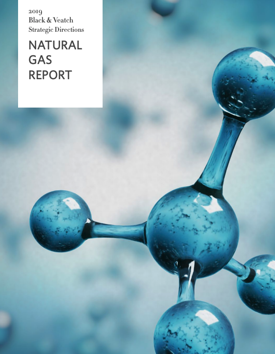 2019 Strategic Directions: Natural Gas Report
