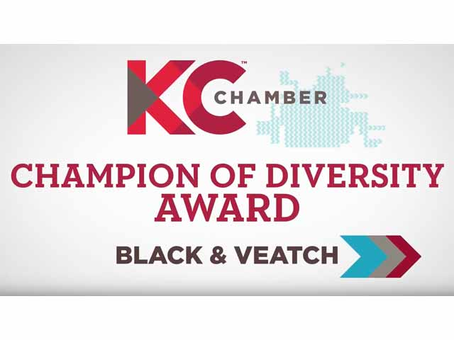 KC Chamber Champion for Diversity Award