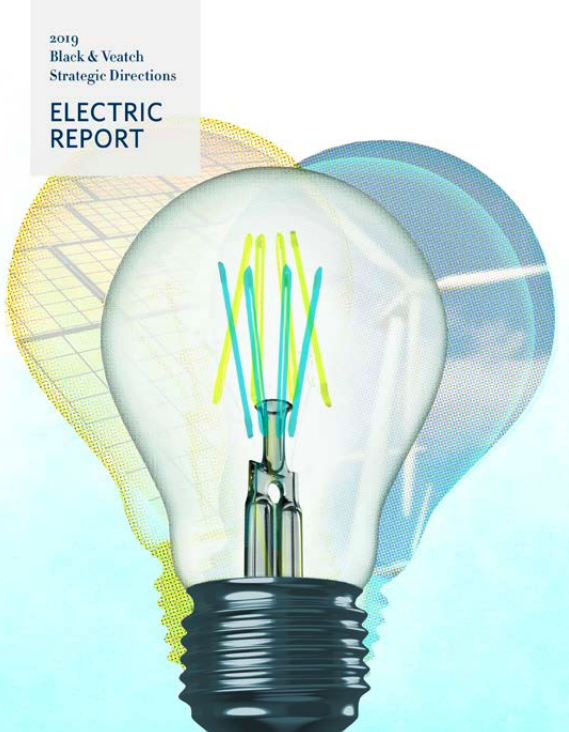2019 Strategic Directions: Electric Report