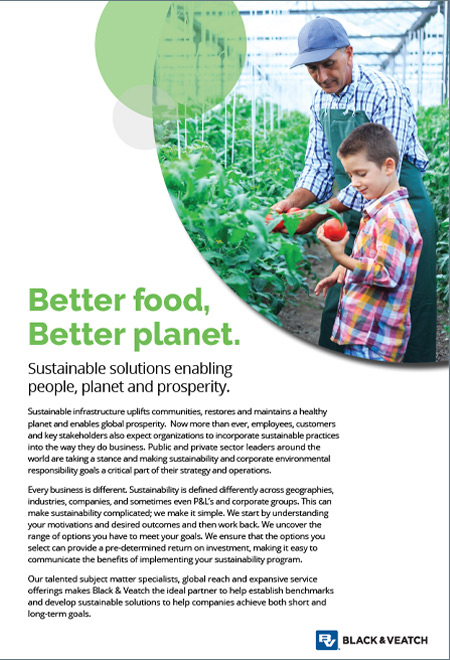 Food & Beverage: Sustainable Solutions