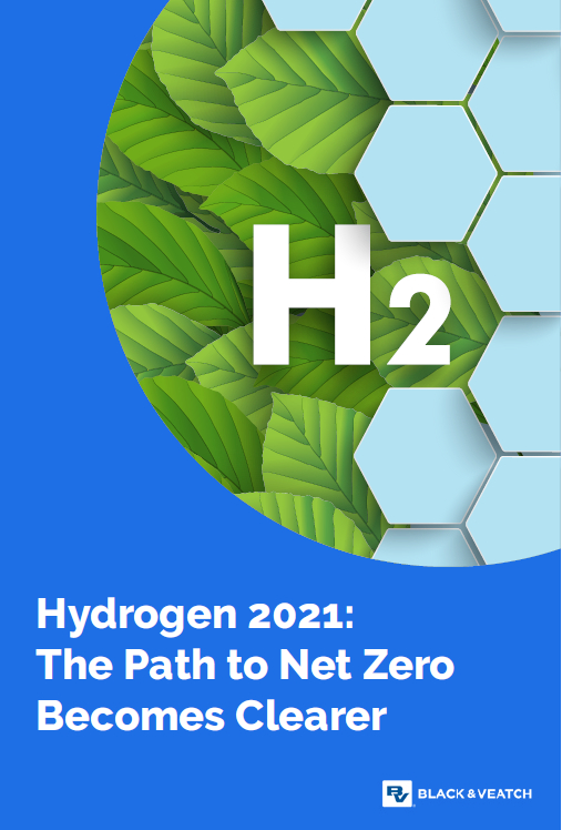 Hydrogen 2021: The Path to Net Zero Becomes Clearer teaser image