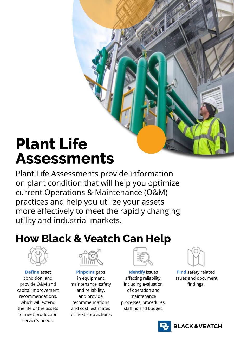 Plant Life Assessments