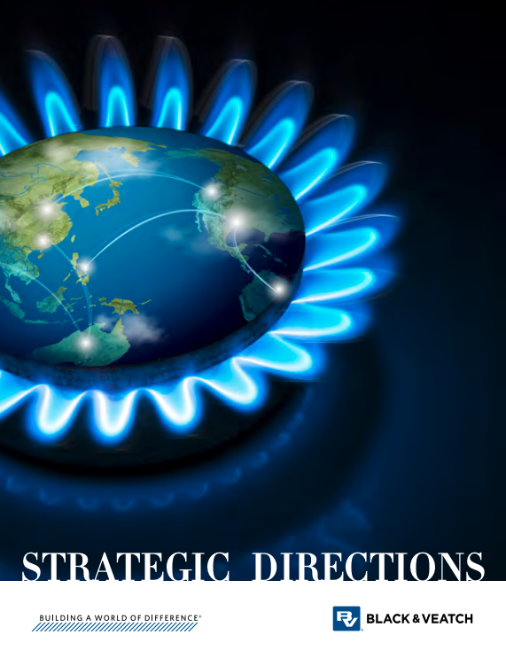 2017 Strategic Directions: Natural Gas Report